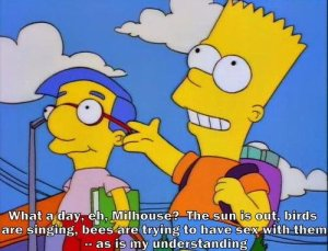 Bart teaches Milhouse