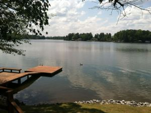stephens river cabin
