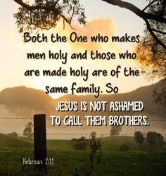 Hebrews 2-11