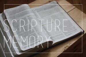 scripture-memory